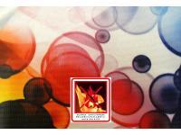Digiflag-Fahnenstoff 105 g/m² Eco pro/m² inkl. Konfektion/Druck